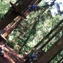 sommerferien-kletterwald-25